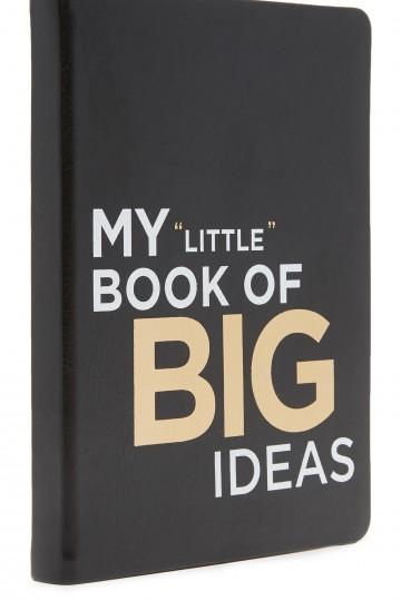 My Little Book of Big Ideas Journal