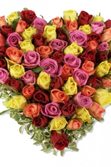 101 Mix color | Flowers Delivery Manila
